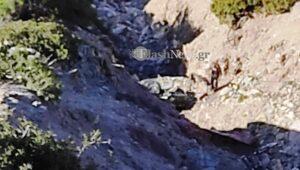 Χανιά: Τραγωδία - Νεκρή μια κοπέλα από πτώση ΙΧ σε γκρεμό (φωτο)