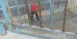 Κρήτη: Γείτονας σχολείου που τελεί υπό κατάληψη απειλούσε μαθητές με τσεκούρι (video)
