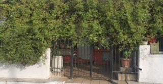 Χανιά: Μυστήριο καλύπτει τη δολοφονία της ηλικιωμένης - Άφαντος ο σύντροφος της