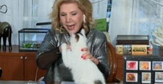 Ο γάτος επιτέθηκε στη Λίτσα Πατέρα στον αέρα (video)